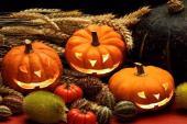 Halloween je anglosaský svátek, který se slaví 31. října a nikoli na hřbitově, ale na ulicích a výzdobou domovů