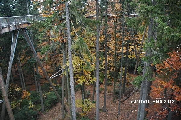 Obr. 2: Stezka v korunách stromů