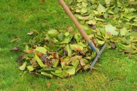 Hrabání listí hráběmi