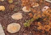 Dlaždicové dřevo - šlapáky