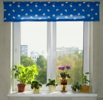 Pokojové rostliny na vnitřním okenním parapetu