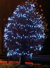 Vánoční světelná výzdoba