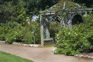 Pergola zasazená do zahrady