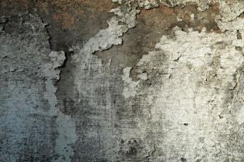 Vlhkostí poškozené zdivo, omítka zcela ztratila svou funkčnost