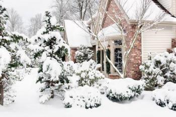 Sněhová nadílka na zahradě