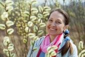 Kvetoucí vrba má silně alergenní pyl