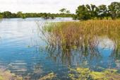 Sousedící vodní plocha či tok bývají častou příčinou zamokření