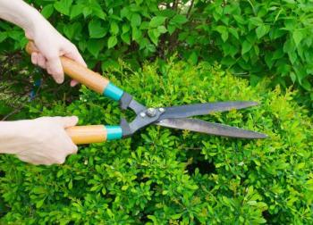 Mechanické zahradnické nůžky