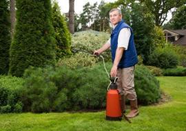 Aplikace listového hnojiva