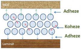 Lepidlo je látka, která má schopnost přilnutí (adheze) k povrchům lepených předmětů a vlivem velké vnitřní soudržnosti (koheze) je schopna vytvořit jejich pevné spojení.