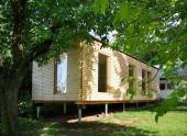 Dům s Ginkgo