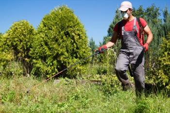 Postřik selektivním herbicidem