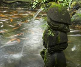 Okrasné jezírko a kamenná fontánka