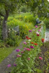 Prosperující zahrada