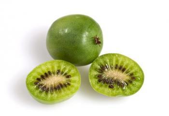 Plody aktinidie význačné - zelené bobule bez ochlupení