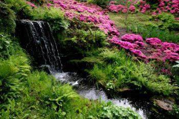 Potůček klikatící se zelení - a zase ta padající voda