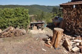 Příprava a skladování palivového dřeva