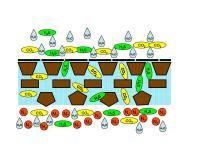 PURGAZ 50 – Nová technologie výroby biometanu