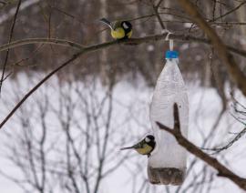 Jednoduché ptačí krmítko z PET lahve