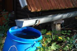 Na jíchu použijeme nejlépe dešťovou vodu