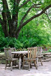 Velké stromy dávají starým zahradám kouzlo