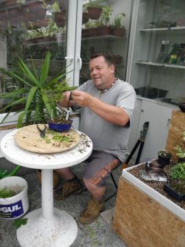 Ing. Martin Zimandl při tvarování bonsaje