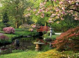 Stín jako přirozená součást kompozice japonské zahrady