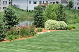 Perfektně udržovaný trávník