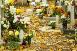 Dušičková výzdoba na hřbitově