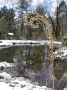 Vodní plocha v zimě