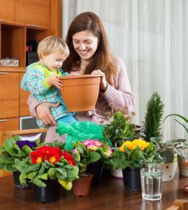 Děti můžeme vést k pěstování rostlin od malička, těm nejmenším je ale do jejich pokojíku ještě raději nedáme