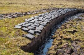 Těžba a sušení rašeliny