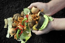Kvalitní kompost a z čeho jej lze vyrobit
