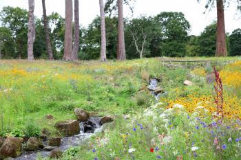 Skladba rostlin se liší podle lokality a půdy