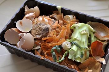 Co patří do kompostu