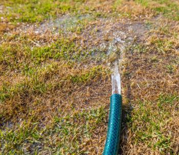 Za delšího sucha je dobré nechat vodu v trávníku pořádně rozlít