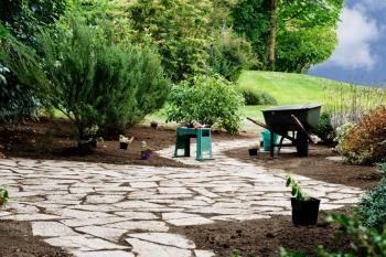 Výsadba větších stromů či přesazení se provádí i při rekonstrukcích zahrad