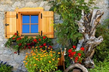 Rafinovaně aranžované okno