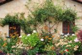 Zahrada jako z pohádky