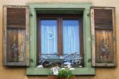 Vtipná výzdoba okna