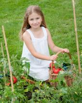Děti milují sklizně