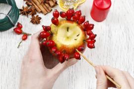 Upevňování plodů šípku