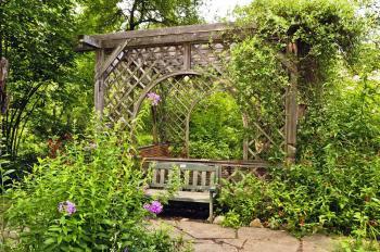 Přírodní zahrady jsou ideální nejen pro ježky