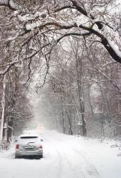 Zimní krajina, tedy silnice