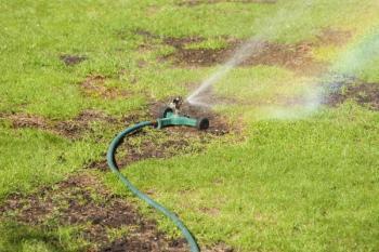 Poškozený trávník je třeba dosít, nejprve ale plochu důkladně zavlažíme