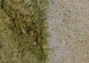 Ošetřený a neošetřený povrch kamene - detail