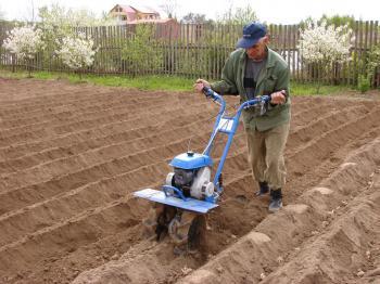 Ti odvážnější si udělají ze zahrady posilovnu a zásobí se například bramborami na celou zimu