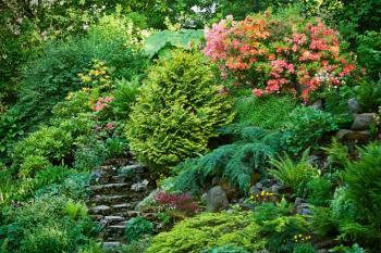 Zahrada ve svahu, která si dovede uchránit maximum vody v půdě