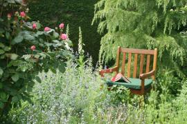 Bohatě ozeleněná zahrada