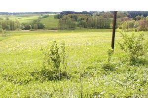 Foto: www.ČESKÉSTAVBY.cz, stavební parcela v klidné lokalitě